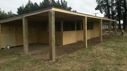 Custom Made Horse Stables