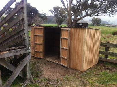 Macrocarpa Wooden Shed